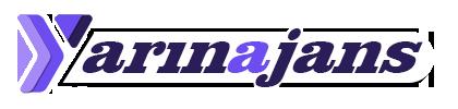 Web Tasarım Yazılım firma